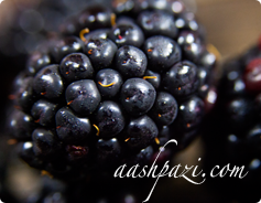 Blackberry Benefits & Nutrition Values