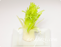 Leek Garnish